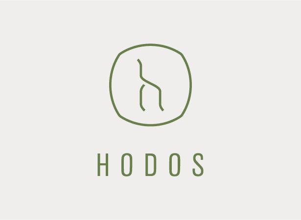 Psihoterapija Hodos